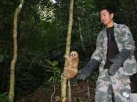 Dehong Wildlife Shelter and Rescue Center , a haven for wild animals in Dehong
